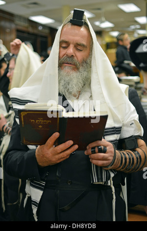 Religious Jewish man praying wearing Teffilin, phylacteries, and a prayer shawl at Lubavitch headquarters in Brooklyn, - Stock Photo