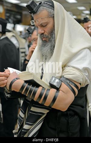 Religious Jewish man praying wearing tefillin, phylacteries, and a prayer shawl at a synagogue in Brooklyn, New - Stock Photo