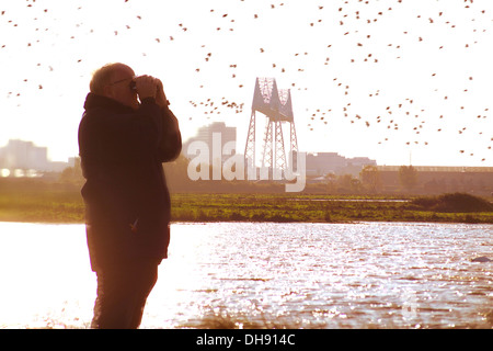 RSPB officer watching  birds at Saltholme nature reserve - Stock Photo