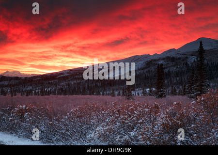 Sunrise over Denali National Park, Alaska. - Stock Photo