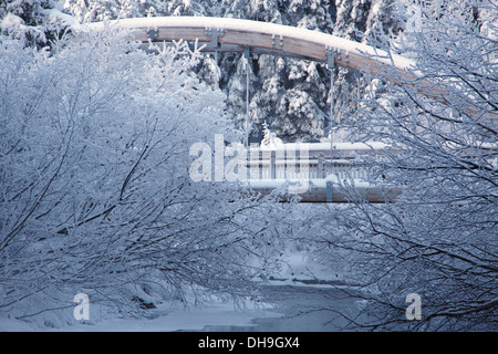 Blue Ice Trail during winter in the Chugach National Forest, Alaska. - Stock Photo