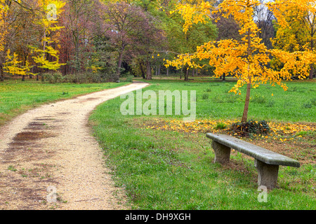 Stone bench and unpaved footpath in autumnal park of Racconigi in Northern Italy. - Stock Photo
