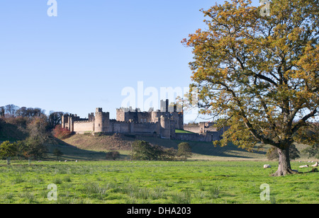 Alnwick castle, Northumberland, England, UK - Stock Photo