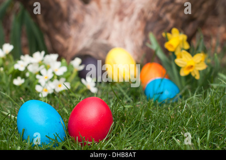 Red and blue Easter eggs-selective focus on the front - Stock Photo