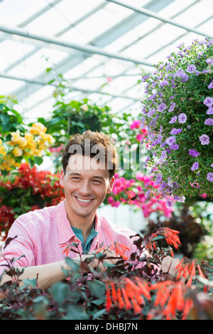 A commercial greenhouse in a plant nursery growing organic flowers. Man working, checking and tending flowers. - Stock Photo