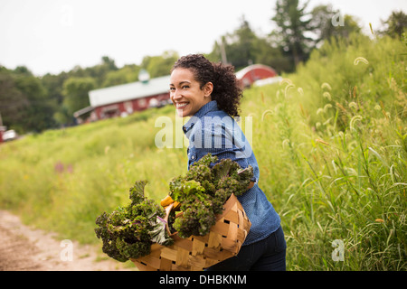 Working on an organic farm. A woman carrying a basket overflowing with fresh green vegetables, produce freshly picked. - Stock Photo