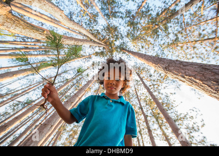 Trees on the shores of a lake. A child standing among the trees. - Stock Photo