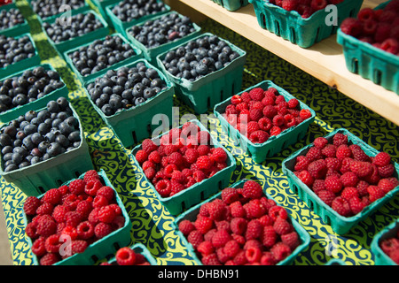 Farm stand with punnets of blueberries and rapsberries for sale, fresh organic fruit. - Stock Photo