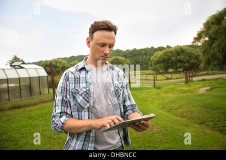 An organic farm in the Catskills. A man using a digital tablet in a grass paddock. - Stock Photo
