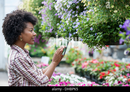 A woman in a plant nursery surrounded by flowering plants and green foliage. - Stock Photo