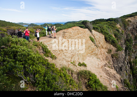 A Group Of Tourists Take Photographs From A Ridge Overlooking An Island In The Bay Of Islands; Urupukapuka Island, - Stock Photo