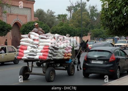 A man sits on the back of a donkey drawn cart in Marrakesh, Morocco - Stock Photo