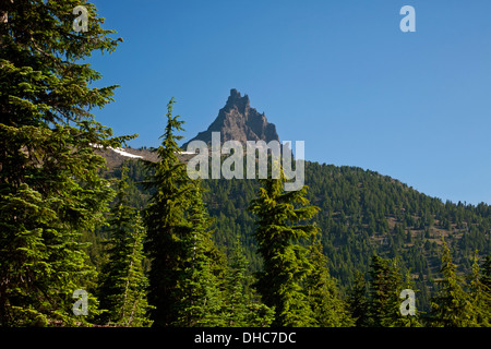 OREGON - Sun on trees at the base of Three Fingered Jack along Pacific Crest National Scenic Trail in Mount Jefferson - Stock Photo