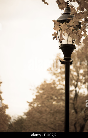 Old antique gas lamp post. - Stock Photo