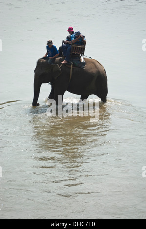Vertical close up portrait of a local Lao mahout and tourists on elephant walking through a river in Laos. - Stock Photo