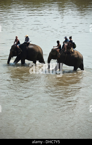 Vertical view of a local Lao mahouts and tourists on elephants trekking through water in Laos. - Stock Photo