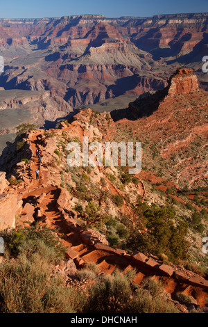 Hikers on the South Kaibab Trail, Grand Canyon National Park, Arizona. - Stock Photo