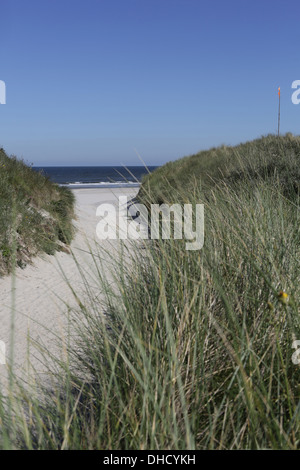 Germany, Lower Saxony, East Frisia, Langeoog, dune at the beach - Stock Photo