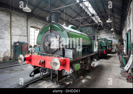 Three former Coal Board Saddletank steam locomotives in the Marley Hill engine shed at the Tanfield Railway, County - Stock Photo