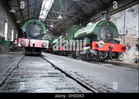 Four former Coal Board Saddletank steam locomotives rest in the Marley Hill engine shed, including 'Sir Cecil A - Stock Photo
