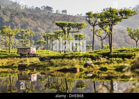 Haputale, reflections of a public bus in a lake in the Nuwara Eliya District, Sri Lanka Hill Country, Sri Lanka, Asia