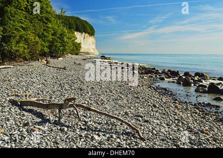 Chalk cliffs, Jasmund National Park, Ruegen Island, Mecklenburg-Vorpommern, Germany, Europe - Stock Photo