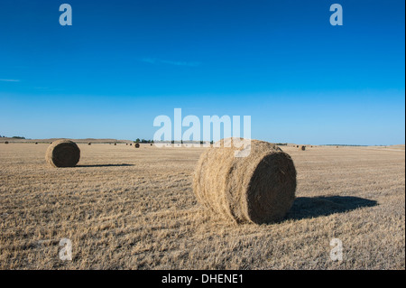 Hay bales on a field along Route two through Nebraska, United States of America, North America - Stock Photo