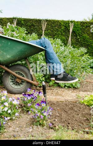 Teenage boy leg's in wheelbarrow - Stock Photo