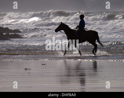 Horse rider on the beach, Bude, Cornwall, UK - Stock Photo