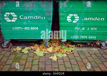 Camden recycle bins autumnal leaves - Stock Photo