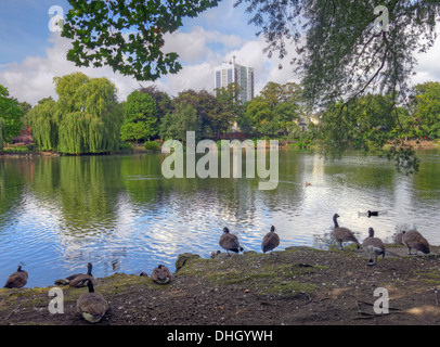 Walsall town Arboretum park pond , West Midlands England , UK - Stock Photo