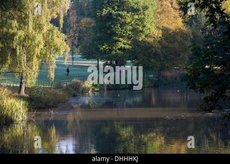 Autumn trees pond landscape scene on Hampstead Heath - Stock Photo