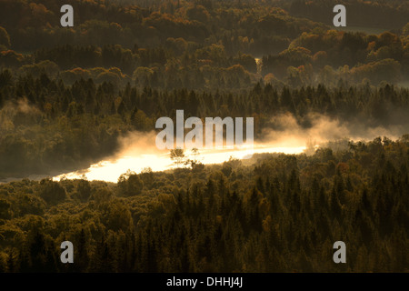 Isar River in the morning fog, Pupplinger Au, Isar Valley, Schlederloh, Icking, Upper Bavaria, Bavaria, Germany - Stock Photo