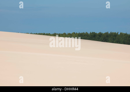 Shifting sand dunes, Słowinski National Park, Pomeranian Voivodeship, Poland - Stock Photo
