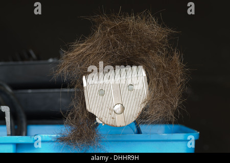 bad hair day style cut piled up onto hair clippers in shape of face - Stock Photo