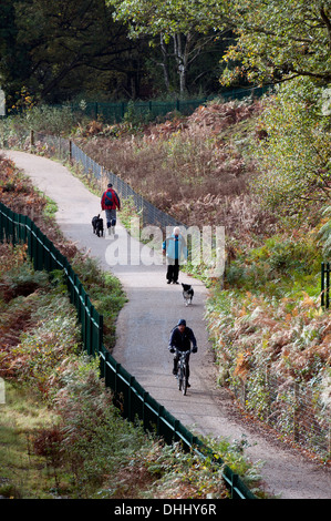 Footpath through Kenilworth Common, Kenilworth, Warwickshire, UK - Stock Photo