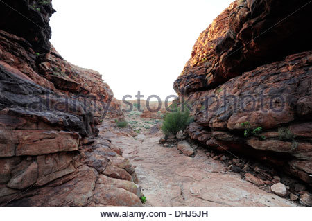 Road to the Kings Canyon, Watarrka National Park, part of the George Gill Range, Outback, Northern Territory, NT, - Stock Photo