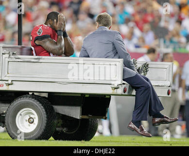 Tampa, Florida, USA. 11th Nov, 2013. DANIEL WALLACE | Times.Tampa Bay Buccaneers running back Mike James (25) is - Stock Photo