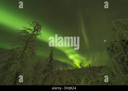 Northern lights (Aurora borealis), Sweden - Stock Photo