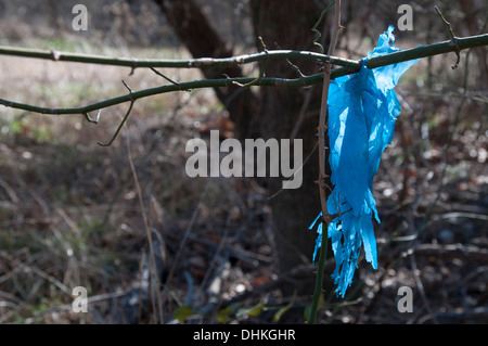 Blue plastic torn on twig - Stock Photo