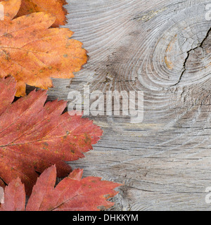 Autumn Leaves over wooden background. - Stock Photo