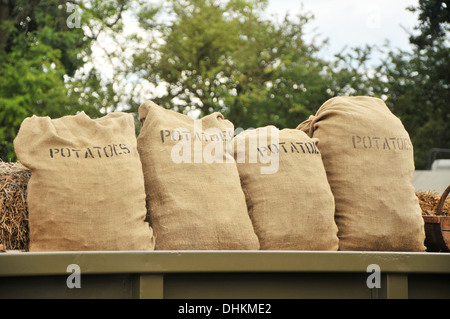 Four sacks of fresh potatoes, in a row on the back of a lorry. - Stock Photo