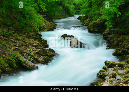 Beautiful Vintgar gorge and wild river Radovna near Bled Slovenia - Stock Photo