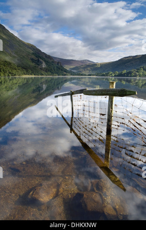 Image of a fence and reflection going into Llyn Gwynant. The mist rising over the lake partially obscures Gallt - Stock Photo