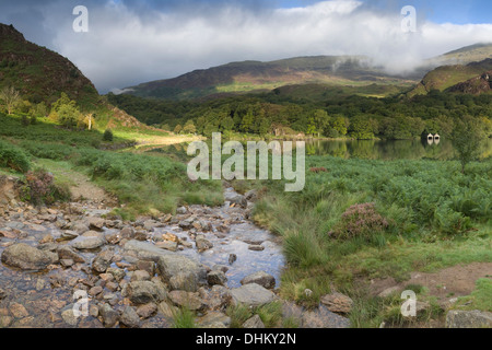 A shaft of early morning light streaks across the edge of Llyn Dinas, Snowdonia - Stock Photo