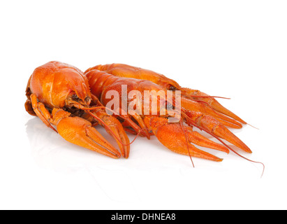 Three boiled crayfishes. Isolated on a white background - Stock Photo