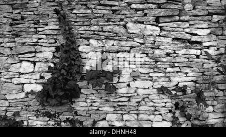 Traditional Dry Stone Wall, Bibury Court, Gloucestershire - Stock Photo