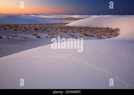 Dunes and shrubs at sunrise, White Sands National Monument, Alamogordo, New Mexico USA - Stock Photo