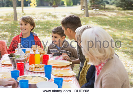 Family enjoying picnic in park - Stock Photo