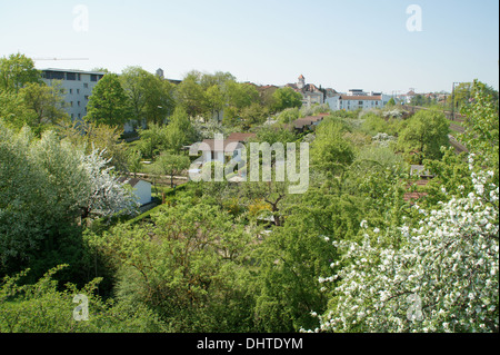 Community garden - Stock Photo